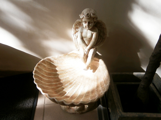 little-angel.jpg